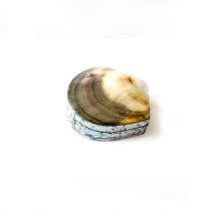 Shell Trinket Box - Gold - Palm Edit