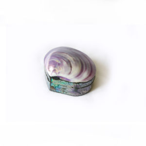 Shell Trinket Box - Purple - Palm Edit